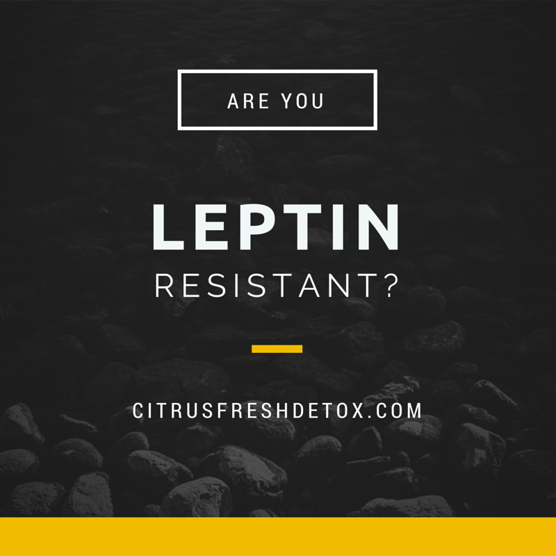GBW Leptin Resistant