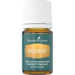 Rosemary-new