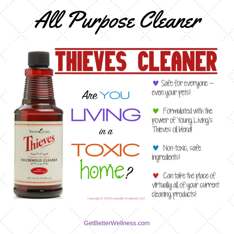 10 YL GBW Graphic Thieves Household Cleaner 091416