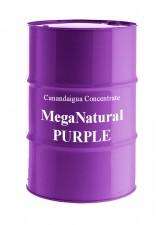 19b_MegaPurple-162x225