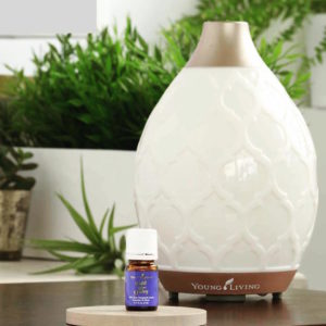 YL Desert Mist Diffuser with Fulfill Your Destiny