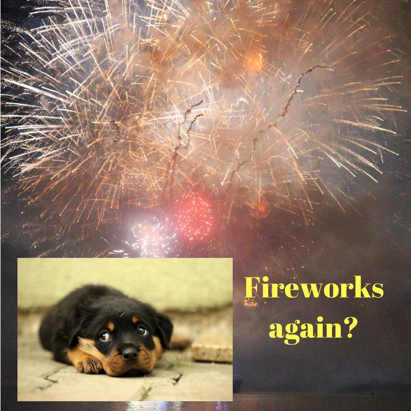 Fireworks again?