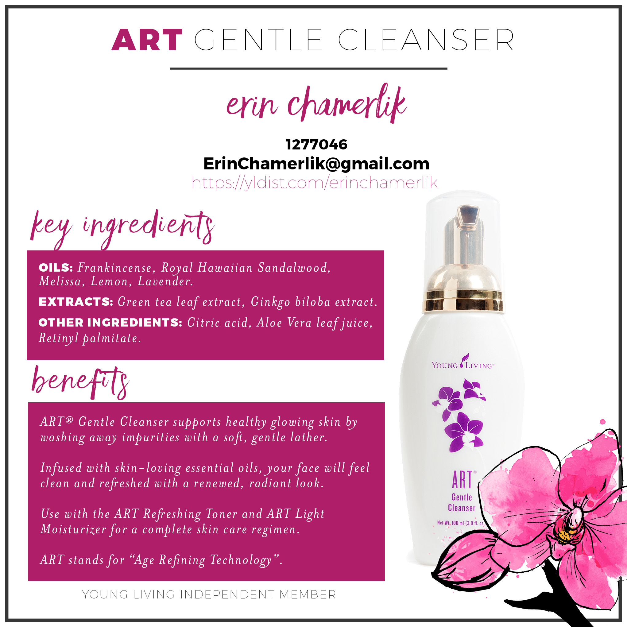 9-art-gentle-cleanser